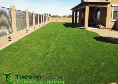 Tucson synthetic grass